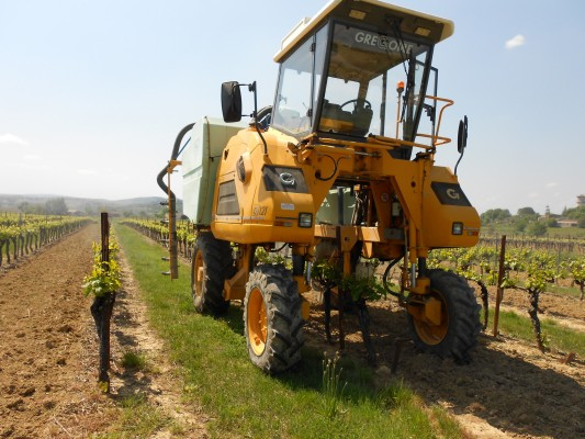 Used Grape harvesting machines For Sale - Agriaffaires